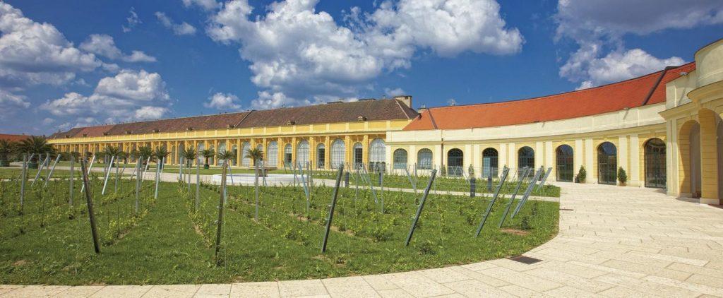 Оранжерея, дворец Шёнбрунн