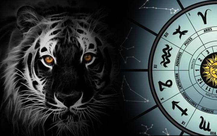 2022-й, год Черного Водяного Тигра,