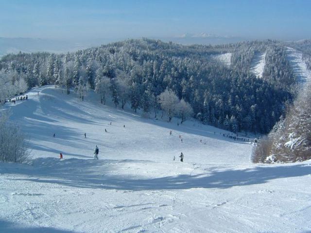 Дриеница (Drienica) Горнолыжные курорты Словакии