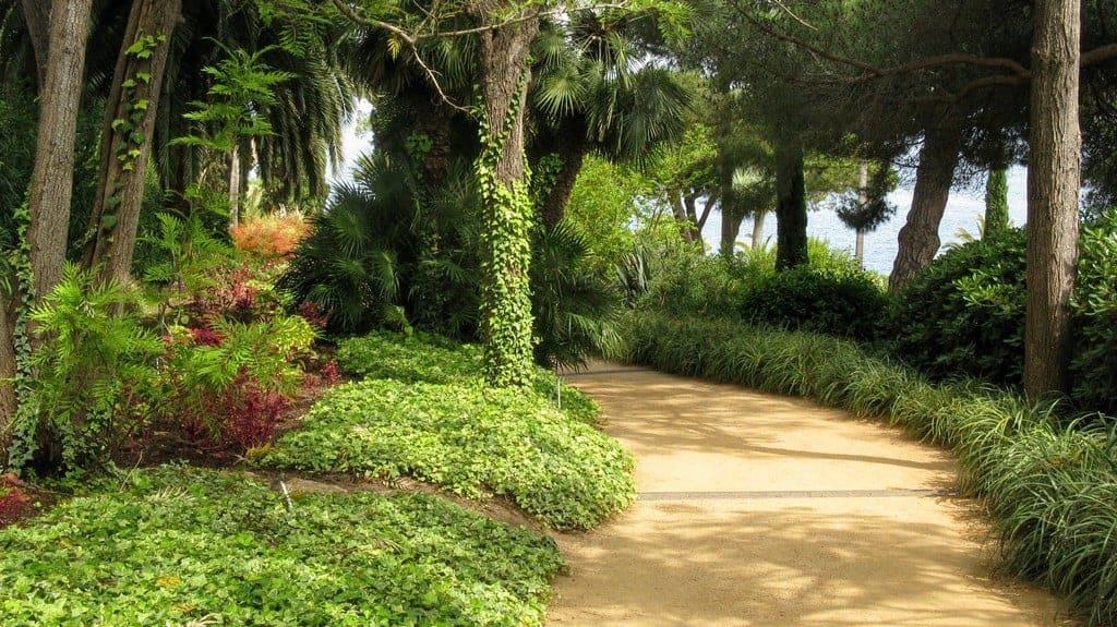 Алея в ботаническом саду Маримуртра (Marimurtra)