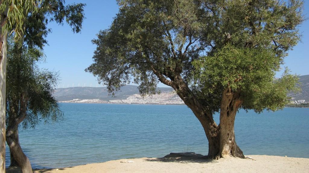 Эгейское море в Турции