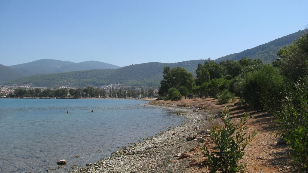 Обилие зелени на берегу Эгейского моря в Акбуке