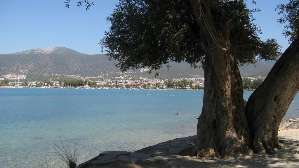 Отдых на берегу Эгейского моря в Турции