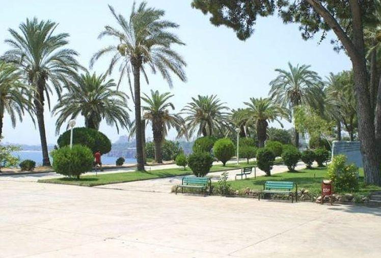 Пальмовые аллеи в парках Анталии