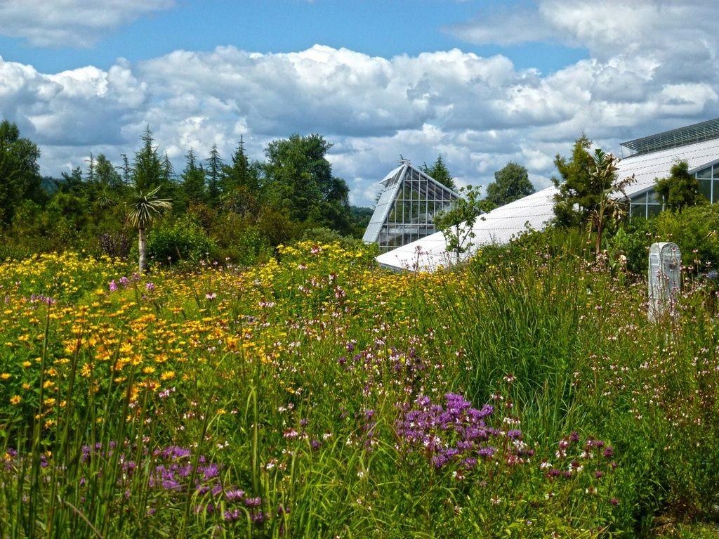 Эколого-ботанический сад университета Байройта