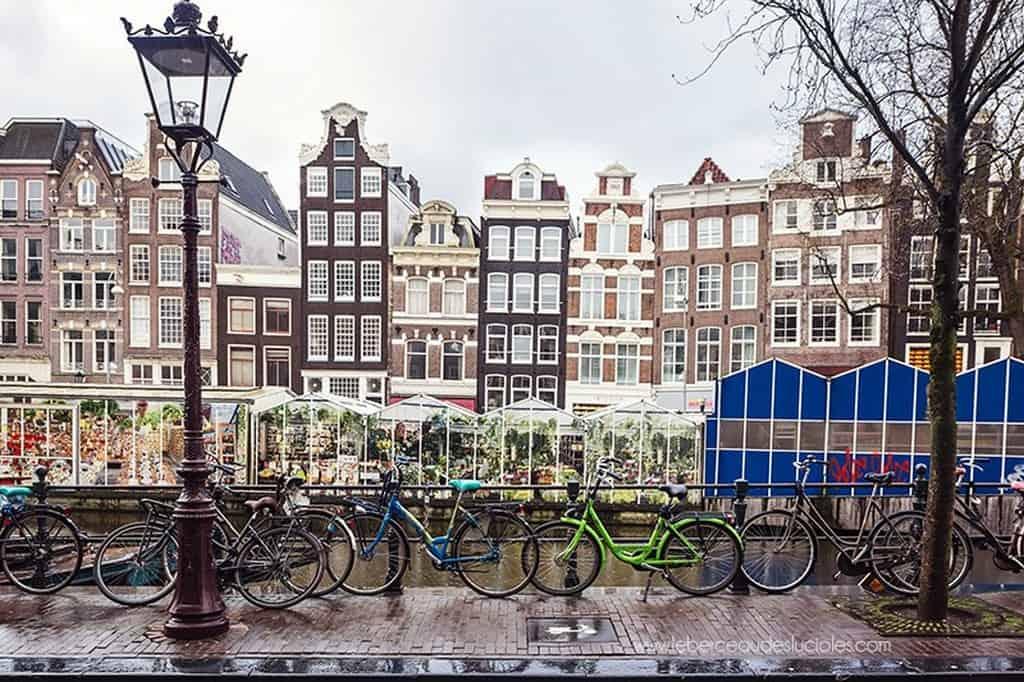 Цветочный рынок -  Bloemenmarkt (Амстердам)