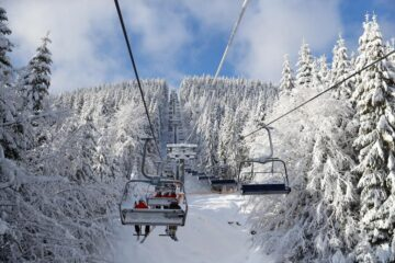 Природа Буковеля зимой