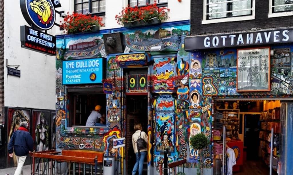 Самый старый кофешоп Амстердама – The Bulldog Coffeeshop