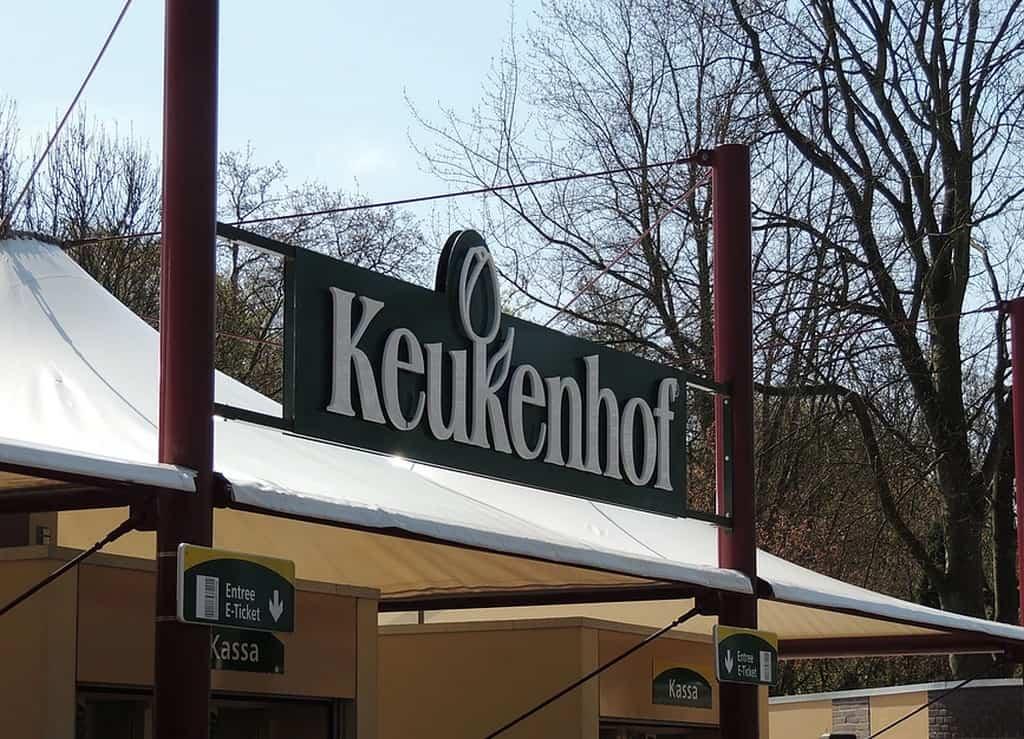 Касса в парке тюльпанов Кёкенхоф (Амстердам - Нидерланды) - Билеты в Кекенхоф 2021 доступны только онлайн