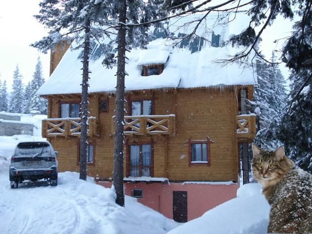Отель Смерекова хата, Горнолыжный курорт Драгобрат