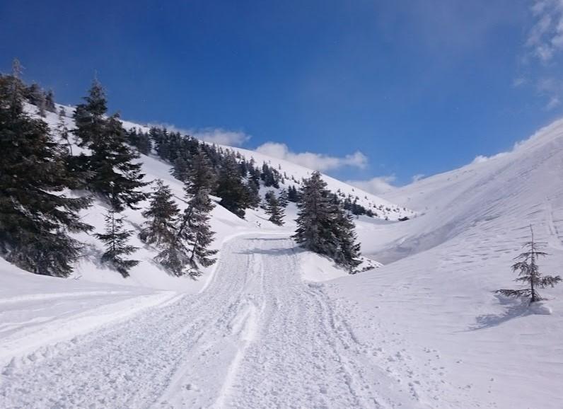 Зимняя дорога в Карпатах