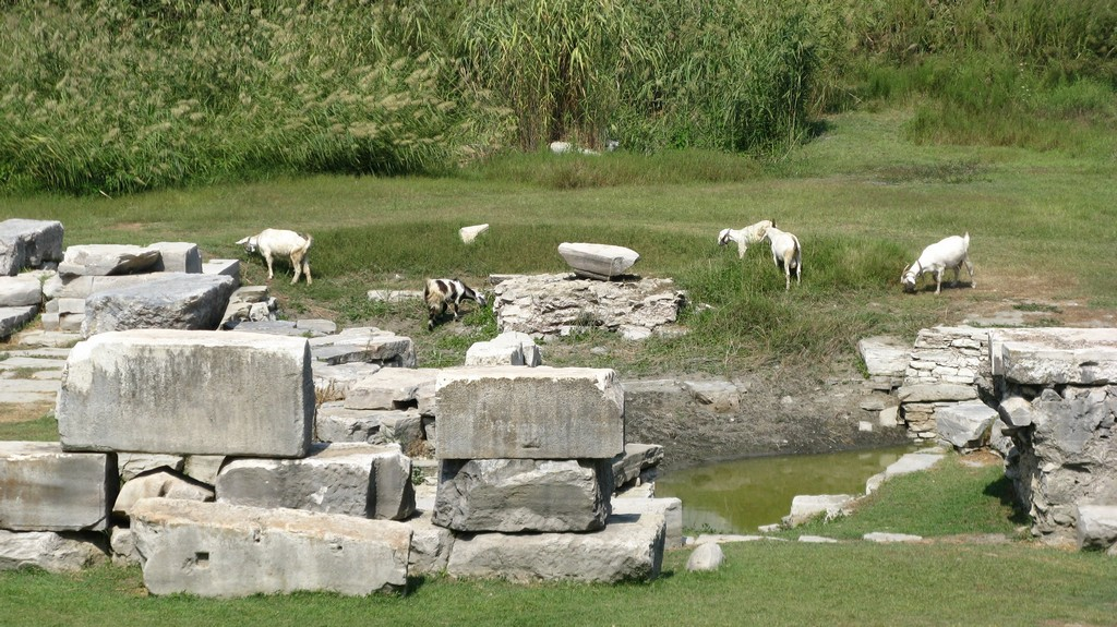 Место храма Артемиды Эфесской
