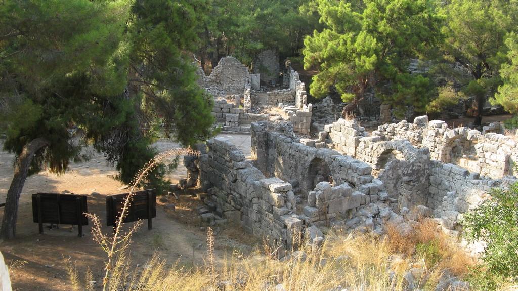 Вид с высоты амфитеатра
