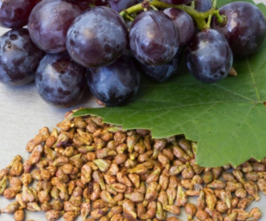 средства на основе косточек винограда - уход за кожей лица