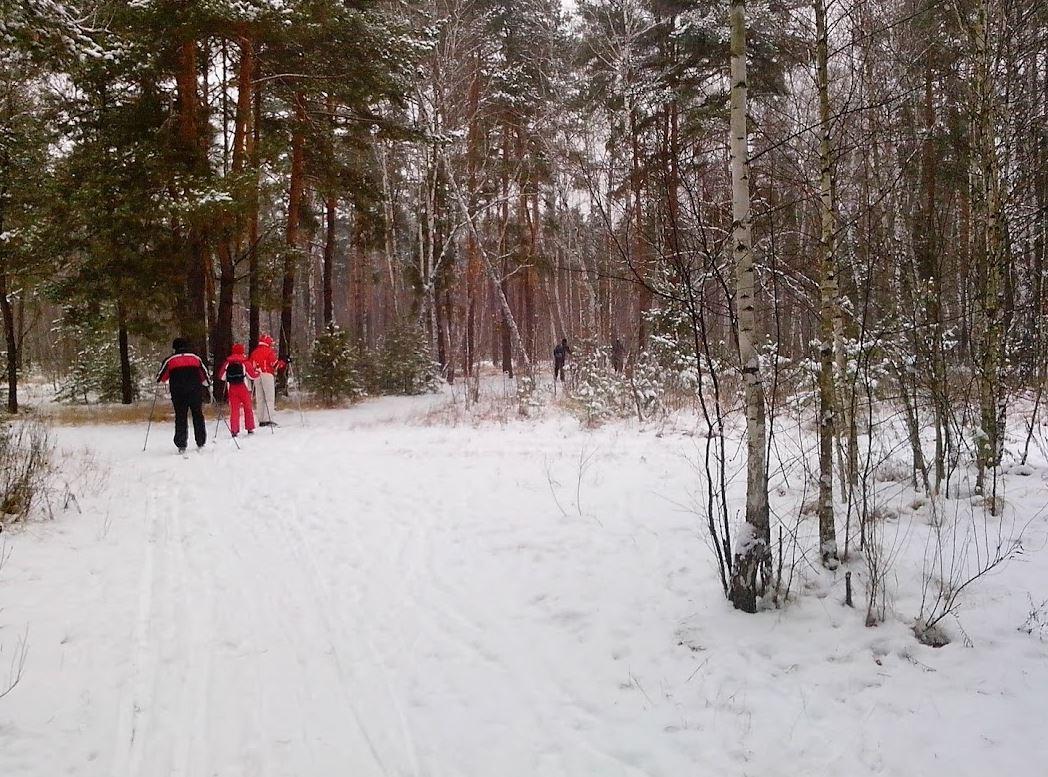 Лыжи беговые Здоровый образ жизни