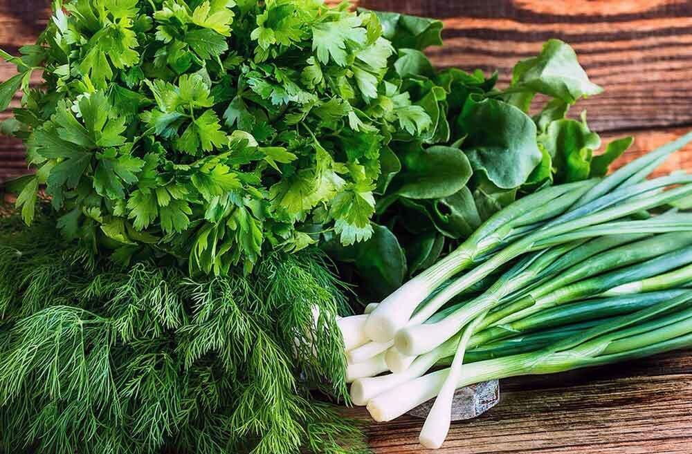 Зелень: петрушка, укроп, зеленый лук