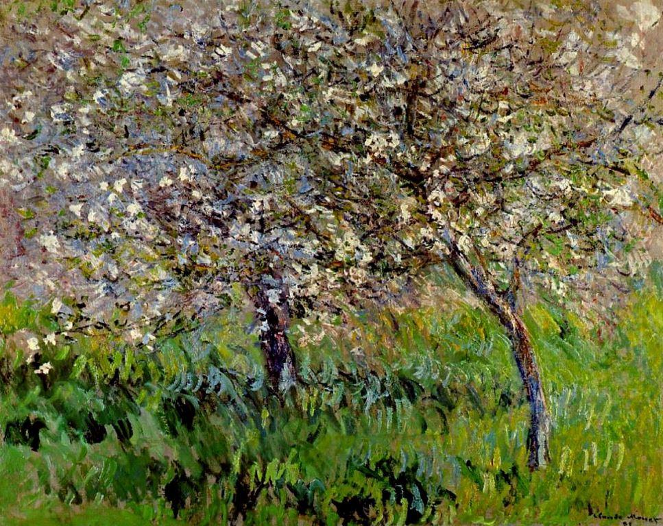 Яблони в цвету в Живерни (Pommiers en fleurs), Клод Моне, 1901 г.