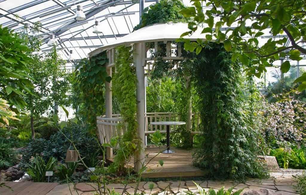 В ботаническом саду (Botaanikaaed)
