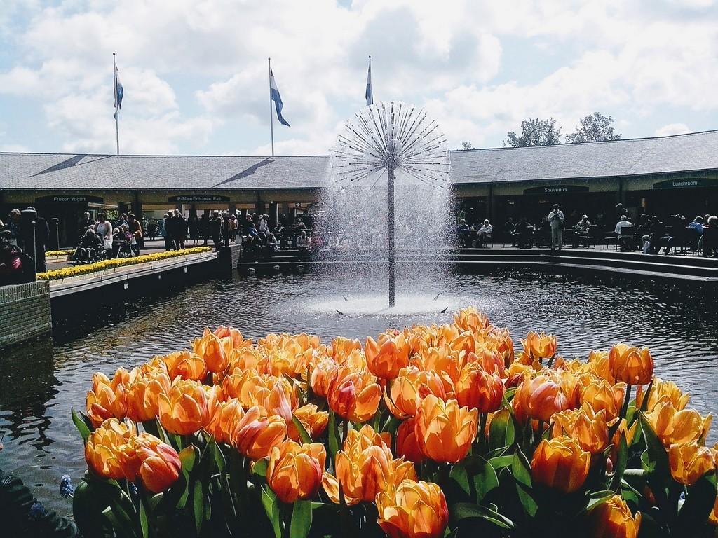 Кёкенхоф - парк рядом с Амстердамом