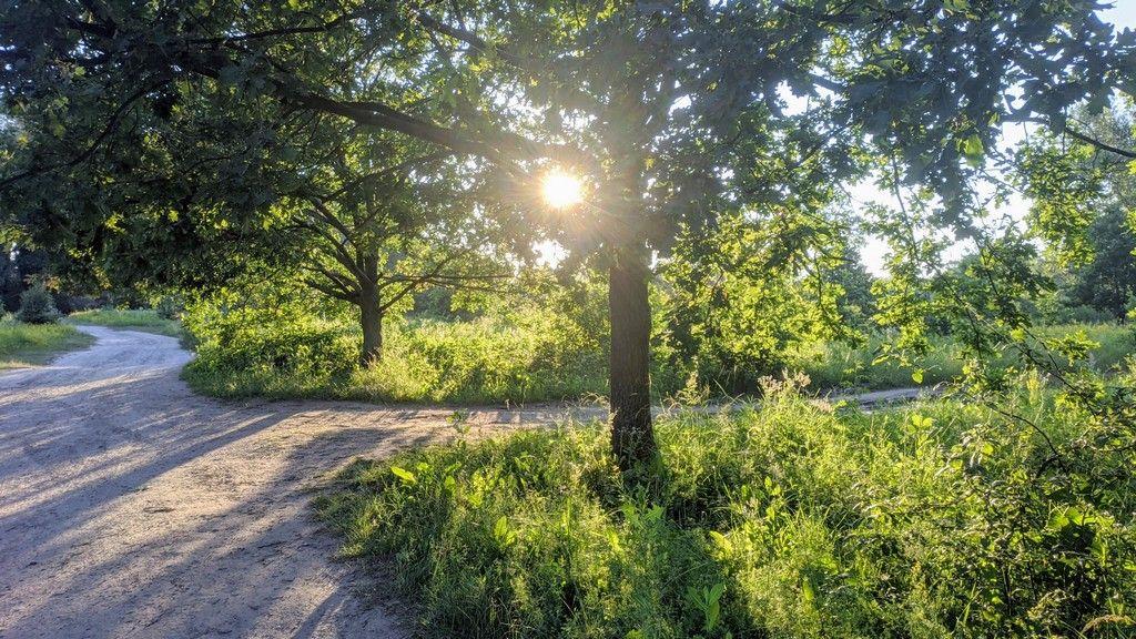Закат летнего дня - Оболонский луг Киева