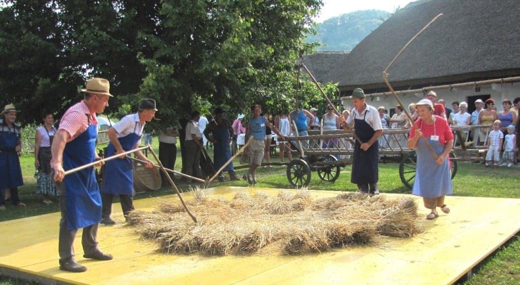 Музейная демонстрация по сельскому хозяйству