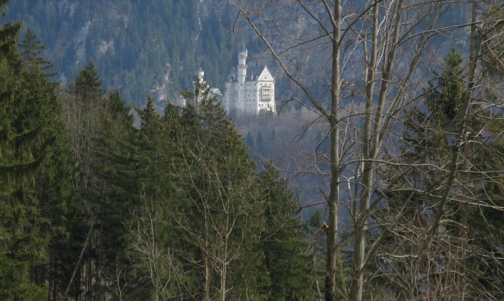 Вид на замок Нойшванштайн с лесной тропы