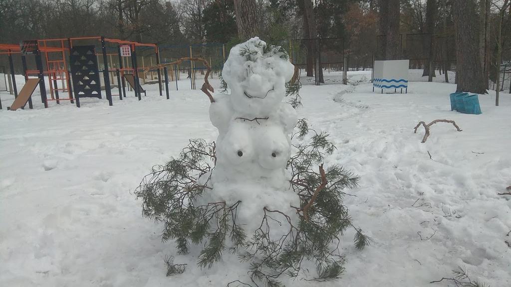 Пуща-Водица, зима