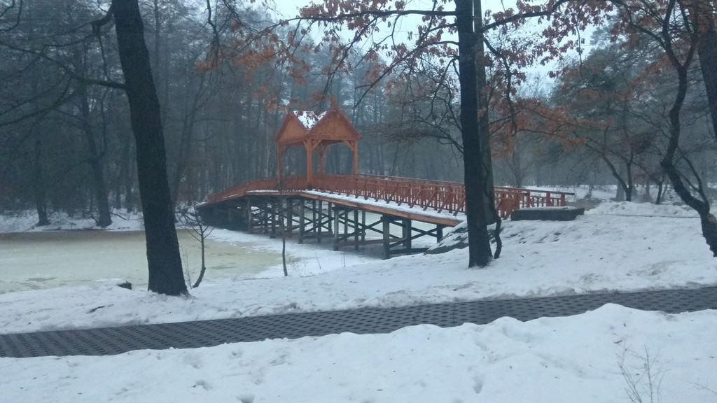 Мост в Пуще-Водице зимой