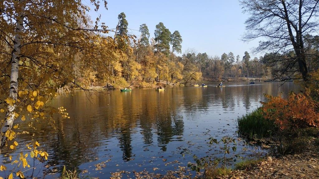 Озеро Горащиха, Пуща-Водица