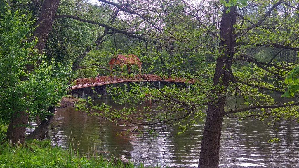 Новый мост через озеро в Пуще