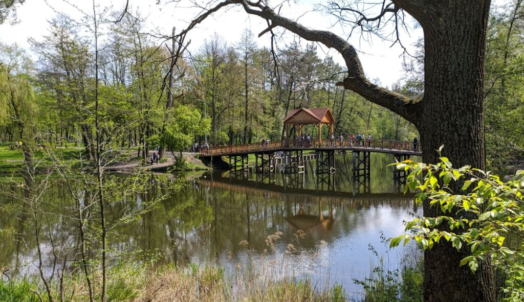 Озеро Горащиха в Пуще-Водице (мост)