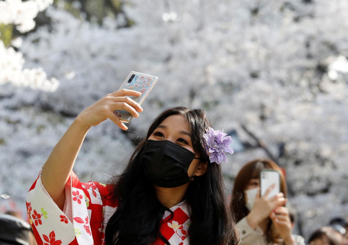 Цветения сакуры в Японии началось раньше на 3 недели