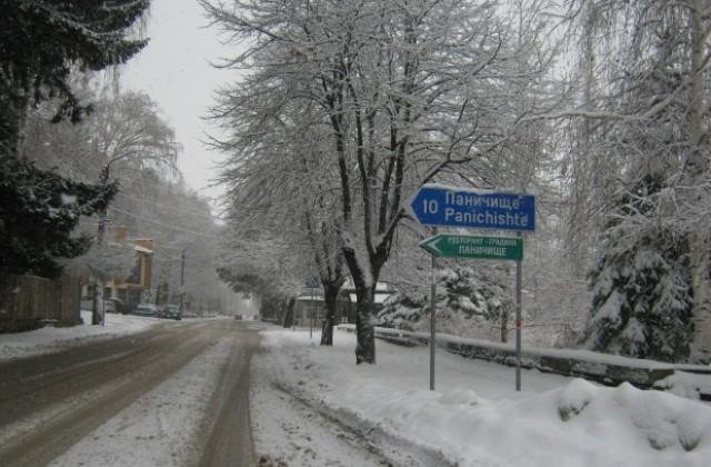 Зимняя дорога Паничище