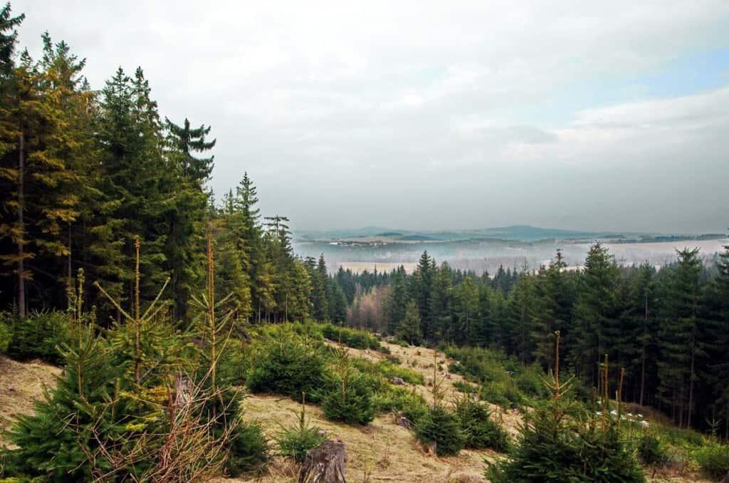 Славковский лес (Slavkovský les)