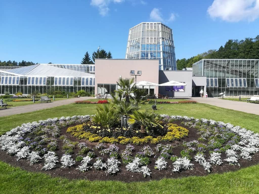 Таллинский ботанический сад Таллин (Эстония)