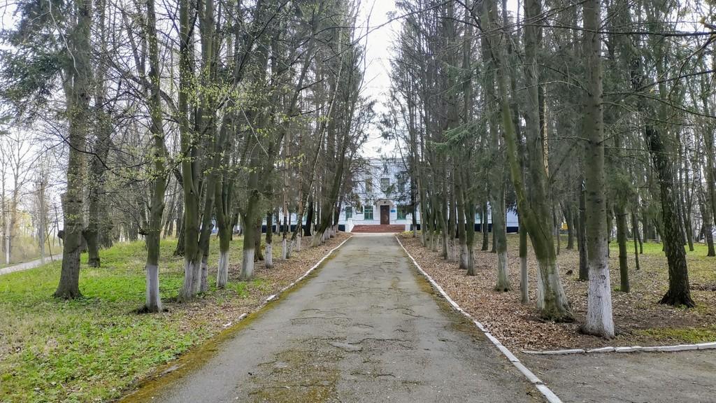 Парк вокруг усадьбы фон Мекк в Браилове