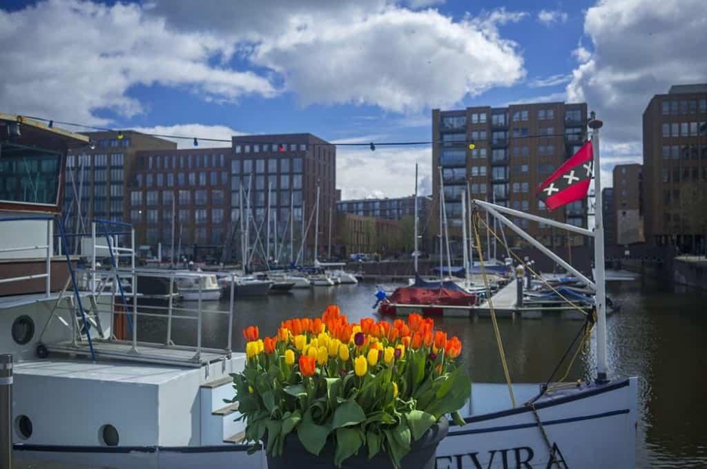 Три креста Святого Андрея на флаге Амстердама