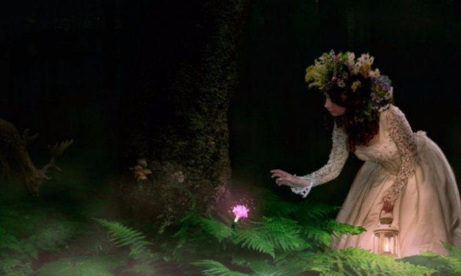 Мифический цветок папоротник, Ивана Купала и Петров пост