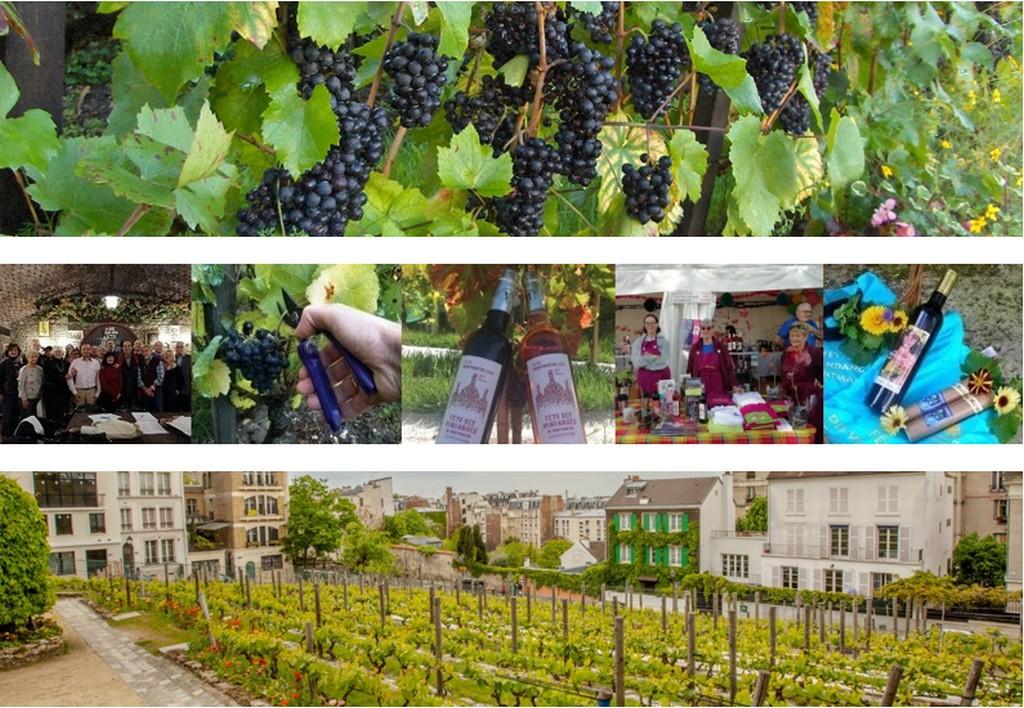 Виноградники Монмартра (Clos-Montmartre)